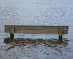 A half-submerged park bench